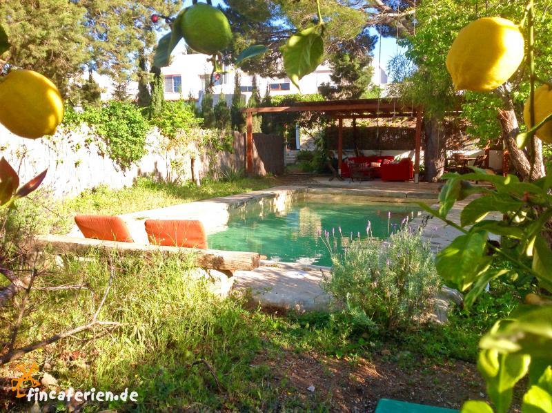 Ibiza ferienhaus mit pool privat mieten fincaferien finca - Formentera ferienhaus mit pool ...