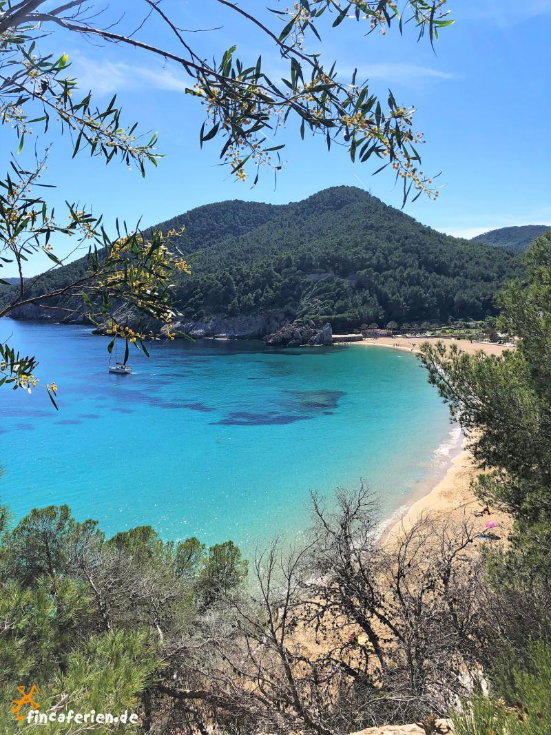 Ibiza preiswerte Ferienwohnung direkt am Strand, bis 4 Personen ...