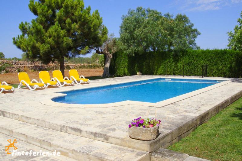 Großer Pool mallorca urlaub mit der familie in großer finca mit pool