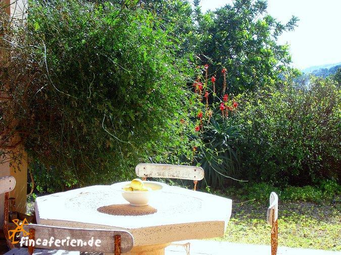 wohnzimmer bar würzburg:ferienhaus mit pool im wohnzimmer : Mallorca Urlaub im Ferienhaus mit