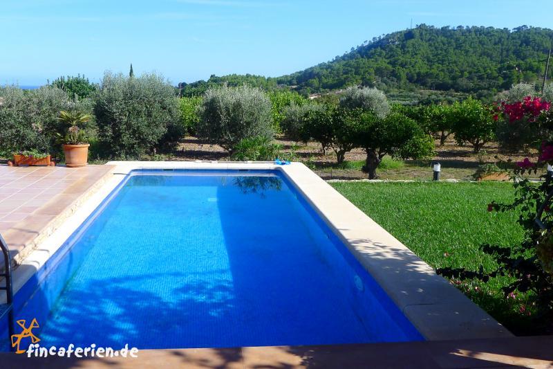 Mallorca finca mit pool und meerblick nahe golfplatz for Finca mit pool
