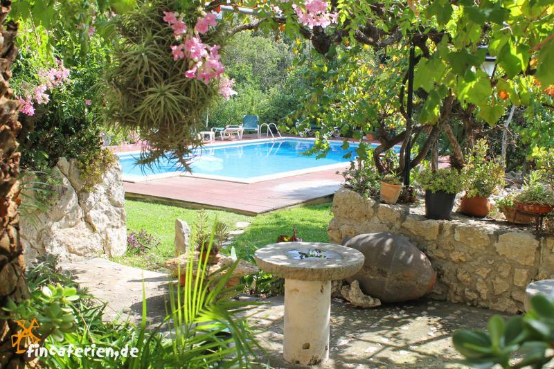 Mallorca studio mit pool und zentralheizung bei pollenca - Gartenanlage mit pool ...