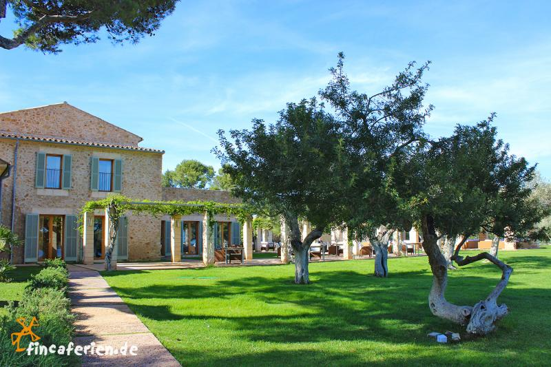 Mallorca  Sterne Hotels Am Meer