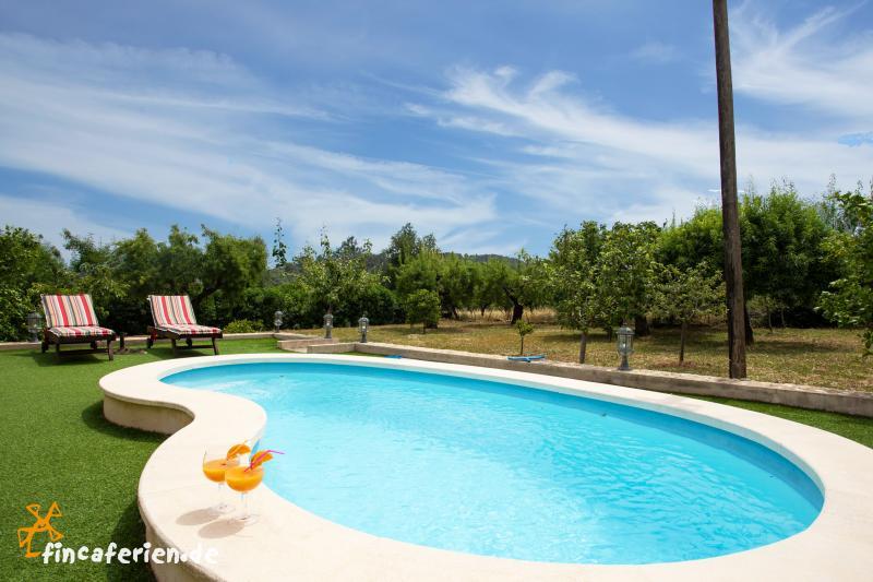Kleine finca mit salzwasser pool klimaanlage internet for Finca mit pool