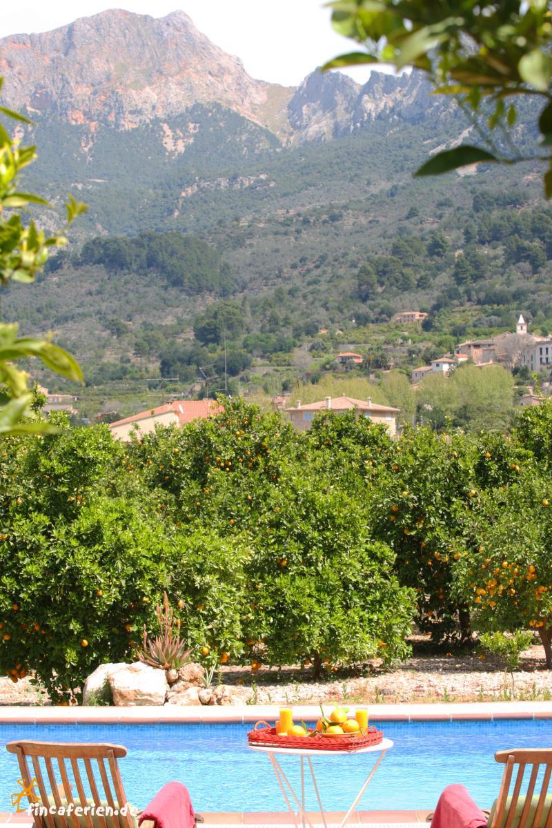 Mallorca familienurlaub finca mit pool bei soller for Finca mit pool