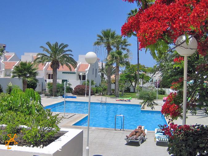 Ferienhaus Teneriffa Mit Pool , Playa De Las Americas Strandnahes Ferienhaus Teneriffa