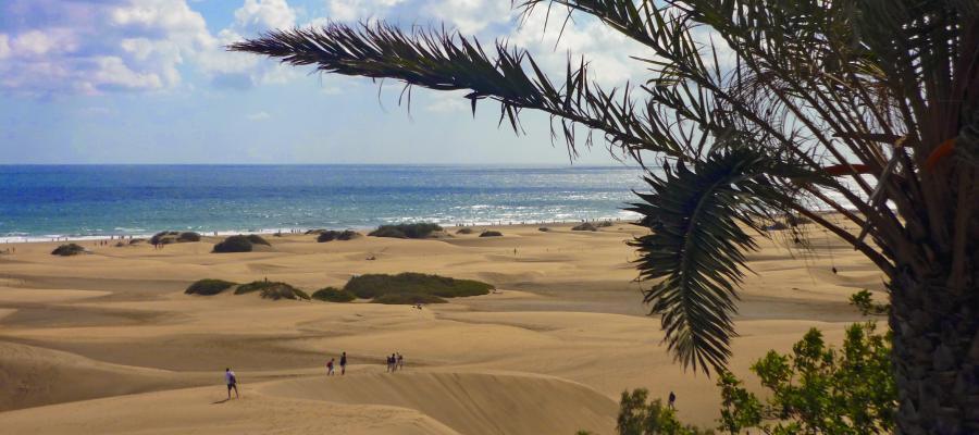 Blick auf die Dünen von Maspalomas