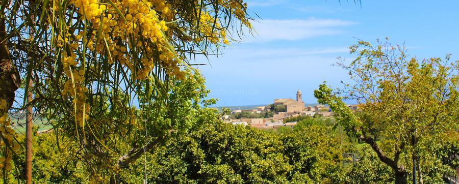 Panoramablick Mallorca bis Sineu