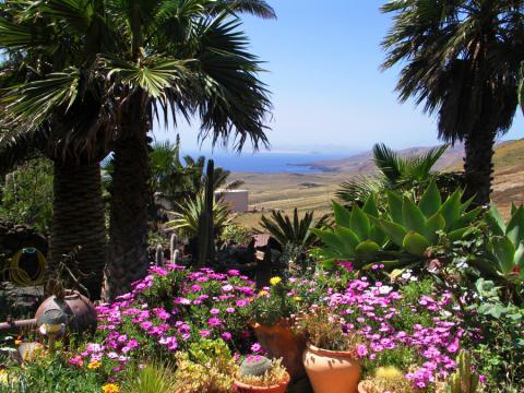 Kanarische Finca mit Pool und tollem Meerblick (Nr. 8503)