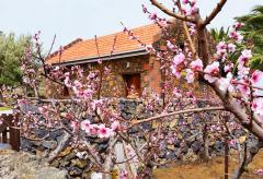 Kleines Ferienhaus für 2 Personen Wanderurlaub auf El Hierro (Nr. 1113)
