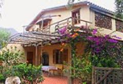 Gran Canaria Urlaub in Finca oder Studio  (Nr. 0901)