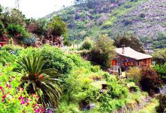 Gemütliche Finca - Urlaub La Gomera  (Nr. 2038)