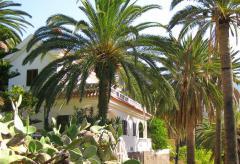 Ferienwohnung im Valle Gran Rey (Nr. 2047.2)