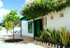 Modernes Ferienhaus mit Pool und Internet  - Lanzarote  (Nr. 0871)