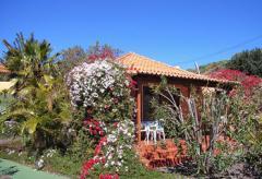 Ferienhaus bei Puerto Naos mit Internetanschluss (Nr. 0818)