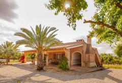 Finca mit Pool - Mallorca Urlaub bei Can Picafort (Nr. 3153)