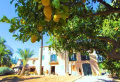 Klimatisierte Finca mit Pool und Internetzugang nahe Palma de Mallorca (Nr. 0462)