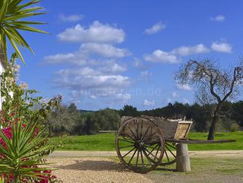 Ibiza - Ferienhaus auf dem Land