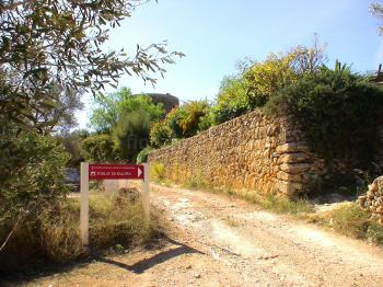 Balafia