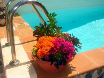 Fuerteventura, Finca mit Pool