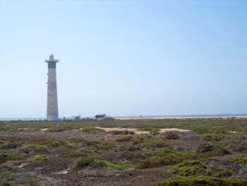 Leuchtturm und Salzwiesen
