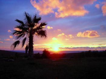 Sonnenuntergänge und Ruhe genießen
