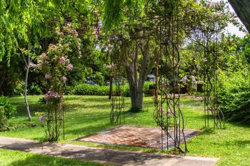 Garten mit Rosen und Rasenflächen