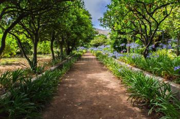 Wundervolle Gartenanlage
