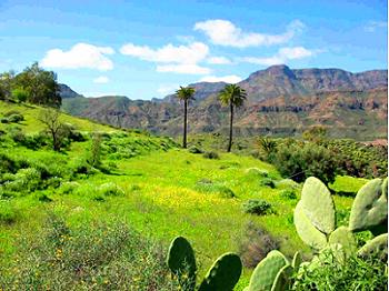 Urlaub im Landhaus auf Gran Canaria