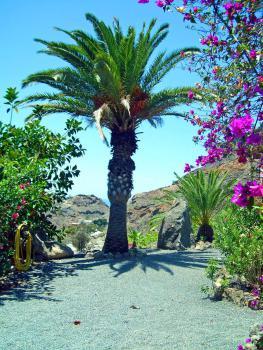 Gran Canaria Ferienwohnung - ruhige Lage