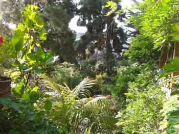 Ferienhaus mit Garten bei Santa Brigida