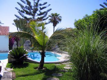 Pool + Garten