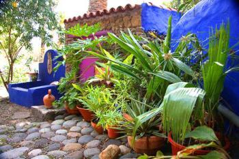 Ferienhaus im Palmengarten