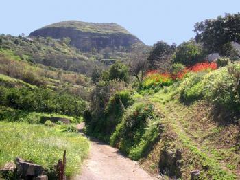 Gran Canaria Nord