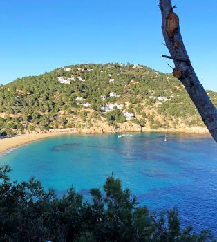 Ferienwohnung Cala San Vicente