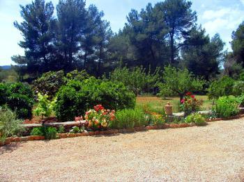 Garten mit Obstbäumen und Blühpflanzen