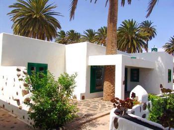 Terrasse mit Palme