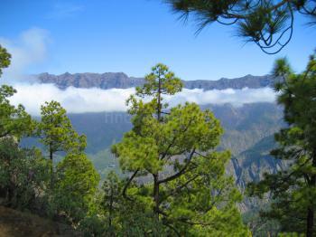 La Palma Urlaub nahe der Caldera de Taburiente