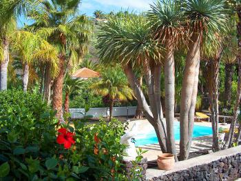 Tropischer Garten mit Pool