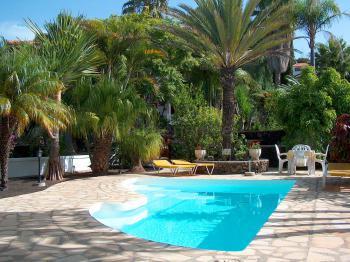 Gepflegter Pool im tropischen Garten