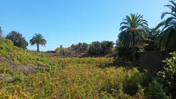 La Palma Urlaub inmitten der Weinberge