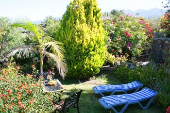 Schöner Garten zum Relaxen
