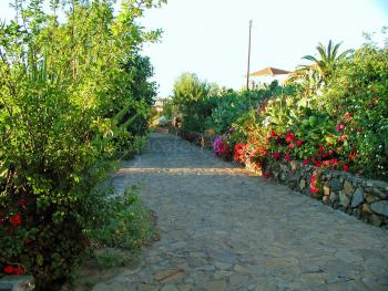 Fincaurlaub in ruhiger Lage bei Puntagorda