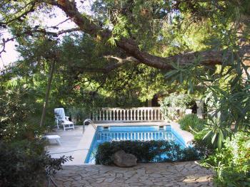 Pool im schönen Garten