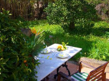 Preiswertes Ferienhaus mit Obstgarten