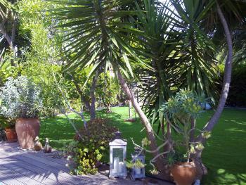und Blick in den Garten