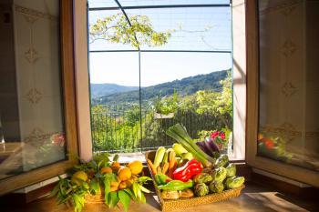 Ferienhaus mit tollem Blick auf Soller