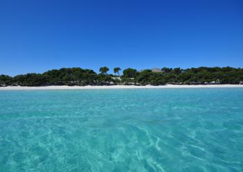 Toller Sandstrand - Playa de Alcudia