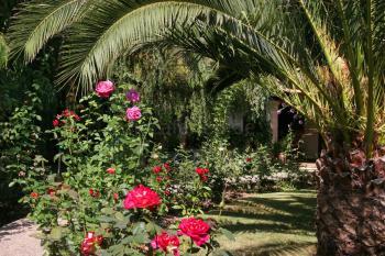 Ideal zum Relaxen im Urlaub auf Mallorca