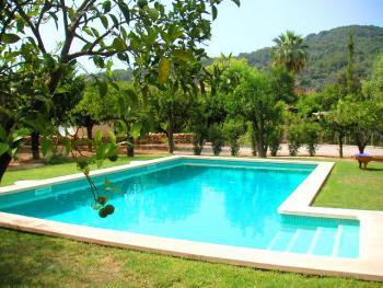 Pool im gepflegten Garten